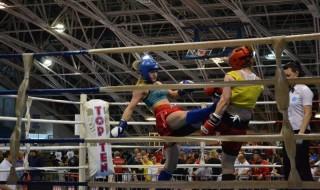 kick boksin
