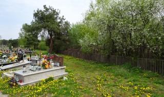 cmentarz dzialki2