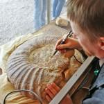 Preparowanie skamieniałości