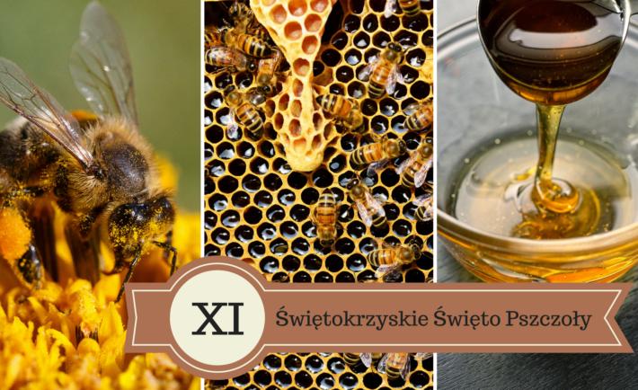 XI-Świętokrzyskie-Święto-Pszczoły1