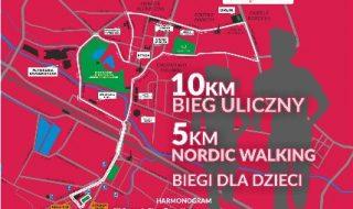Ostrowieckie_Biegi_Niepodleglosci_2019_plakat