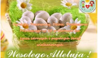pp15 zyczenia