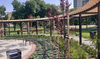 ogrod zdrowia wogolnoplskim konkursie